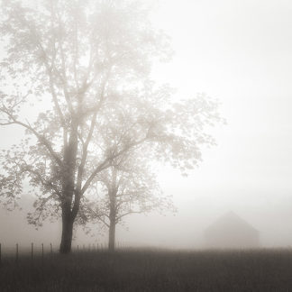 B2802D - Bell, Nicholas - Farmland, Appalachia, 2013