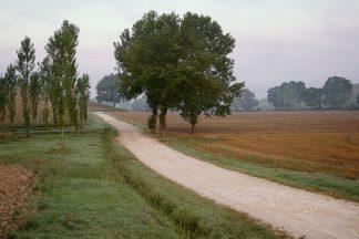 B2885D - Blaustein, Alan - Toscana Valle No.2