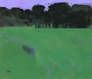 B3191D - Bailey, Paul - Dark Grove