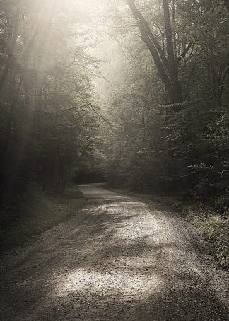 B3209D - Bell, Nicholas - Back Country Road