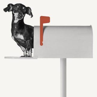 B3298D - Bertelli, Jon - You've Got Mail