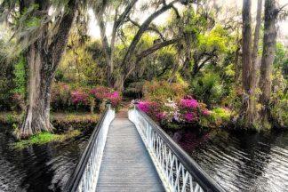 B3334D - Burt, Daniel - The Garden Bridge