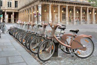 B3353D - Blaustein, Alan - Paris Cycles 1