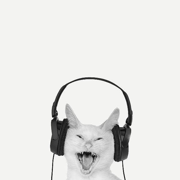 B3391D - Bertelli, Jon - Rockin' Kitten