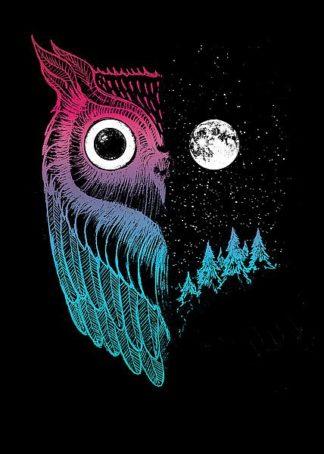 B3457D - Buxton, Michael - Night Owl