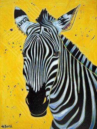 B3512D - Bond, Angela - Zebra