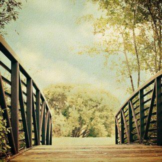 C1075D - Coomes, Sylvia - Bridge to Paradise