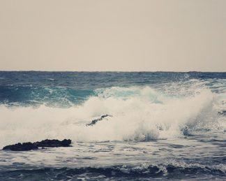 C1076D - Coomes, Sylvia - Ocean Blue