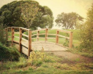 C1077D - Coomes, Sylvia - Sunday Stroll