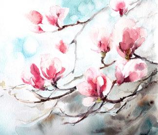 C1083D - CanotStop - Magnolia, Spring