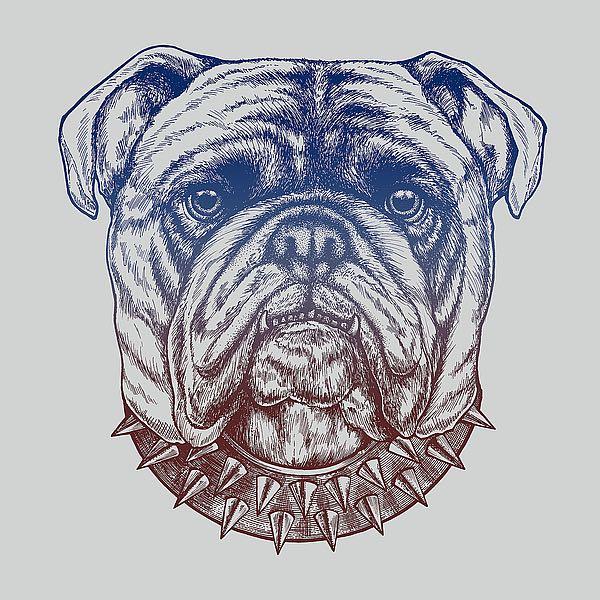 C1148D - Caldwell, Rachel - Gritty Bulldog