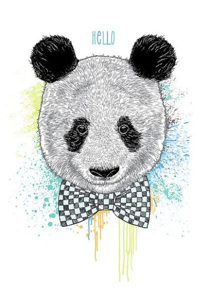 C1149D - Caldwell, Rachel - Hello Panda
