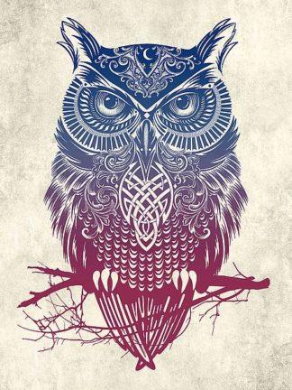C1157D - Caldwell, Rachel - Warrior Owl