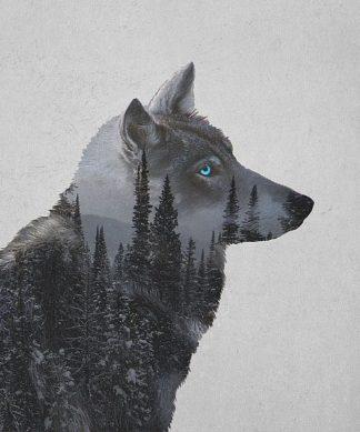 D1001D - Davies Babies - Winter Wolf