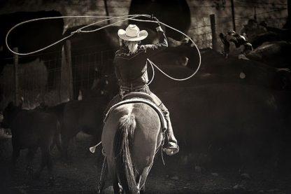 D1018D - Dearing, Lisa - American Cowgirl