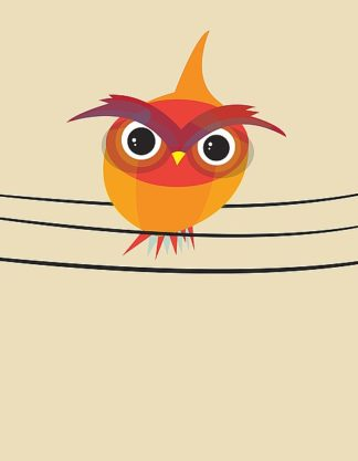 D935D - Dalyan, Volkan - Owl on a Wire