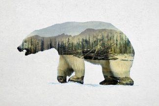 D939D - Davies Babies - Arctic Polar Bear