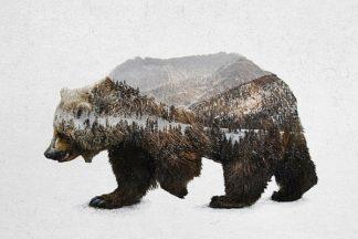 D943D - Davies Babies - The Kodiak Brown Bear