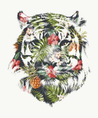 F464D - Farkas, Robert - Tropical Tiger