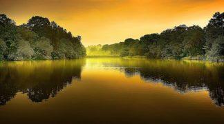G774D - Gonçalves, Adelino - The Lake