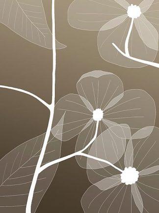IN246_1 - GraphINC Studio - Floral 1