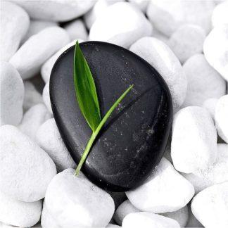 IN30898 - PhotoINC Studio - Zen Stone