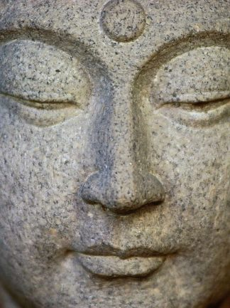 IN30950 - PhotoINC Studio - Buddha