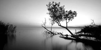 IN31690 - PhotoINC Studio - Great Lake