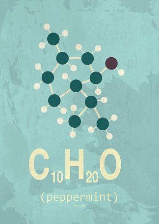 IN31893-7 - TypeLike - Molecule Peppermint