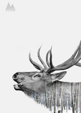 IN32109 - Clean Nature - Deer