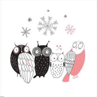 IN32120 - GraphINC - Owl IV