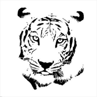 IN32125 - GraphINC - Tiger