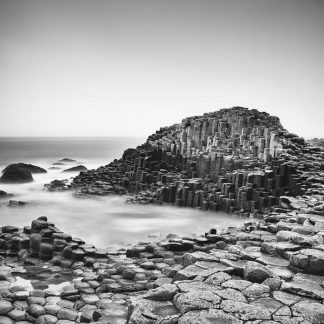 M1420D - Morrissey, Margaret - The Giant's Causeway