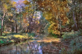 R1035D - Rivera, John - Autumn in the Afternoon