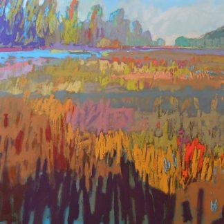 S1151D - Schmidt, Jane - Colorfield XXII