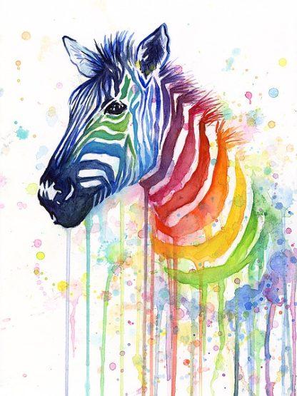 S1271D - Shvartsur, Olga - Rainbow Zebra
