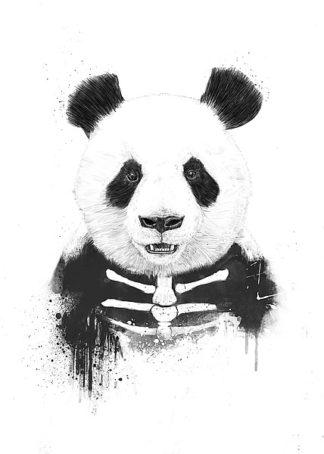 S1303D - Solti, Balazs - Zombie Panda