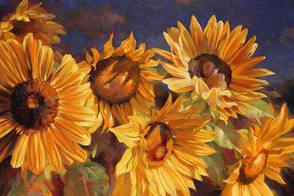 S1316D - Styles, Emma - Sunflower
