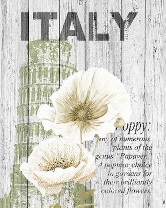 S1327D - Soave, Alicia - Italy Poppies