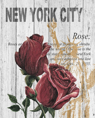 S1328D - Soave, Alicia - New York Roses