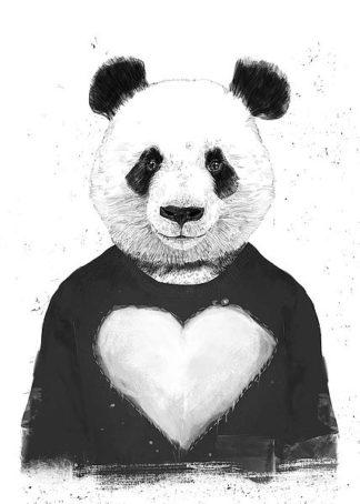 S1408D - Solti, Balazs - Lovely Panda