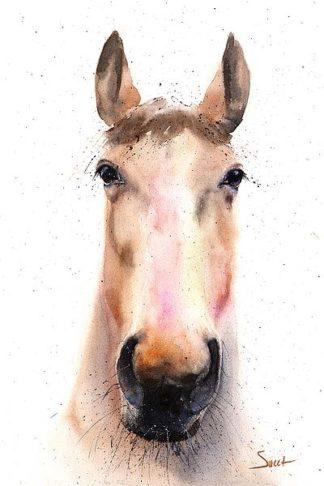S1464D - Sweet, Eric - Spirit Horse