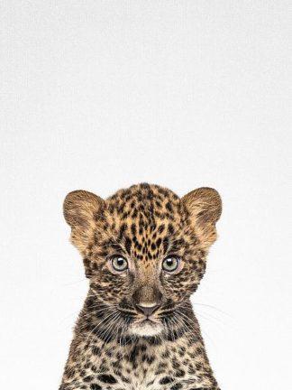 T531D - Tai Prints - Leopard