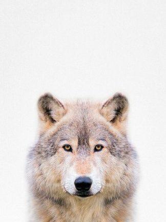 T536D - Tai Prints - Wolf