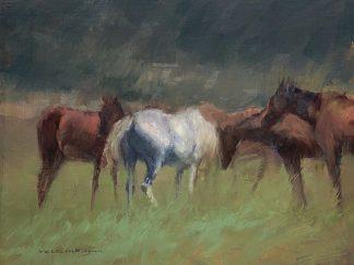 T549D - Tonov, Valtcho - Southern Horses