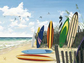 W675D - Westmoreland, Scott - Surf Boards