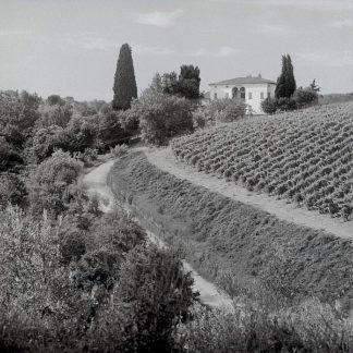 ABIT2292 - Blaustein, Alan - Tuscany #5