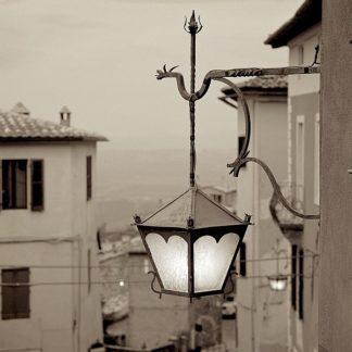 ABIT921 - Blaustein, Alan - Tuscany #10