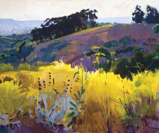 B3525D - Burtt, Marcia - Late Sun, Eucalyptus on the Ridge