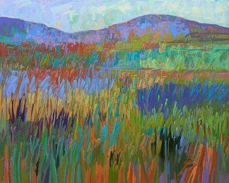 S1587D - Schmidt, Jane - Color Field No. 68